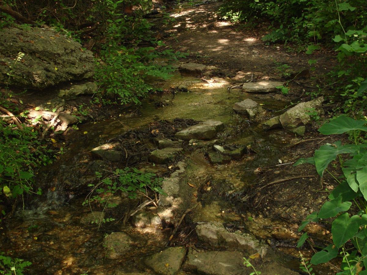 Stumbling Blocks or SteppingStones?
